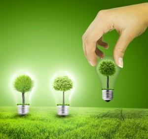 electricite plante verte