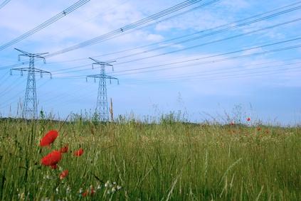 ligne tht pylones electriques nature