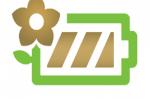 Plant-e : des plantes qui produisent de l'électricité