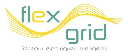 projet flexgrid